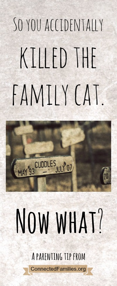 So you accidentally killed the family cat. Now what?