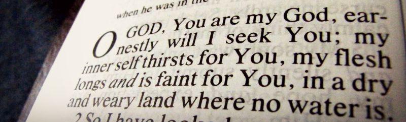 bible psalm 63 banner 2