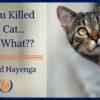 Cat title image