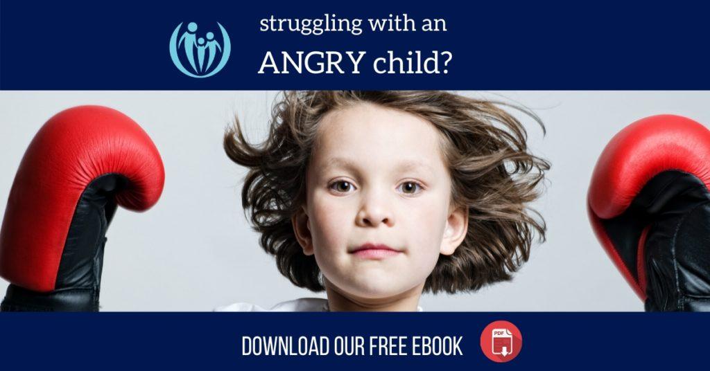 Optimized 1200 Anger ebook