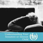 sensitive child workshop