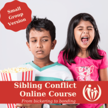 Small Group: Sibling Conflict Online Course
