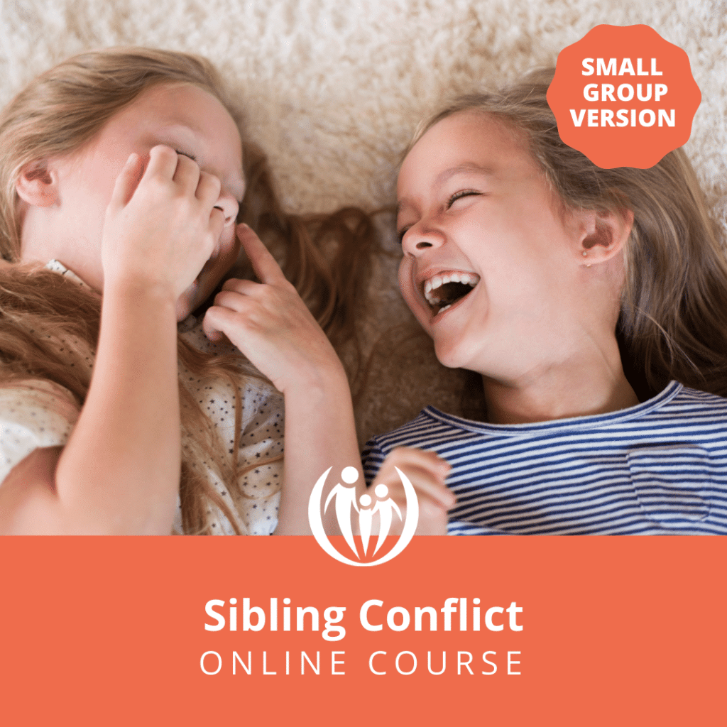 Sibling Conflict Online Course